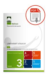 Wellnest Leber-Kraft Vitalur Magazin