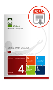 Wellnest Nieren-Kraft Vitalur Magazin