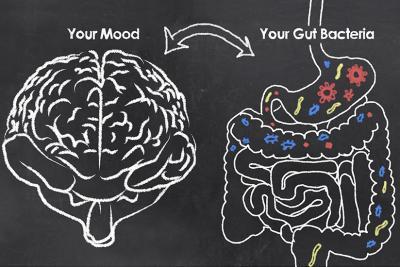 Darmflora und Psyche. Über das bewusstseinsstimulierende Potenzial probiotischer Bakterien